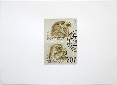 cccp eagles